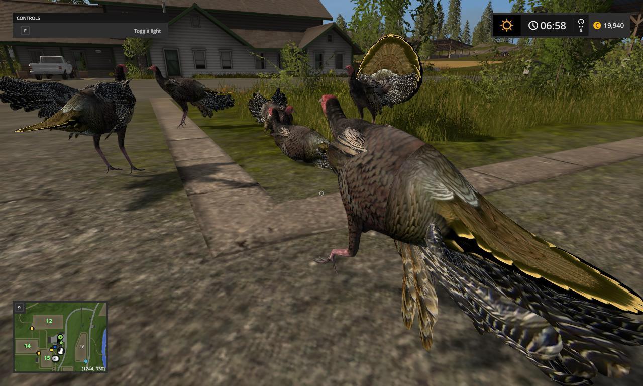 Объекты для карт для игры мод Мод «Индейки» для Farming Simulator 2017