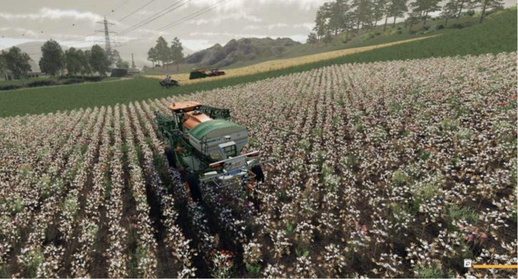 image-Урожай
