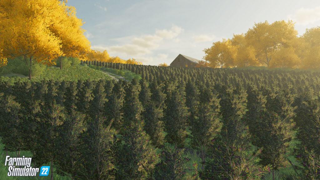 Farming Simulator 22 выйдет